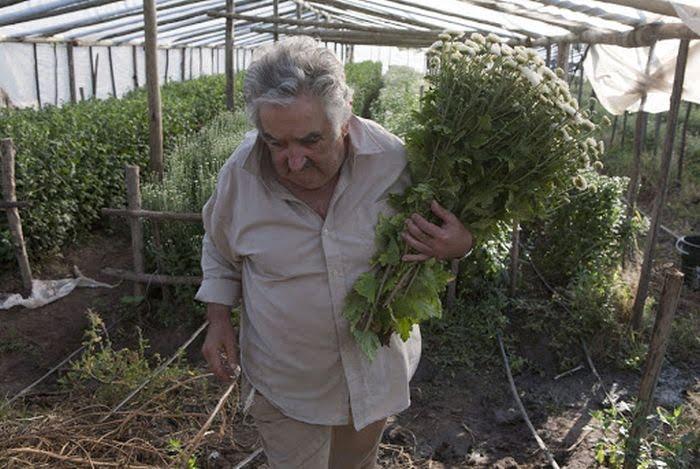 jose mujica uruguay en fakir cumhurbaşkanı