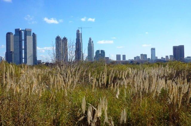 Buenos Aires Egolociga costanera sur
