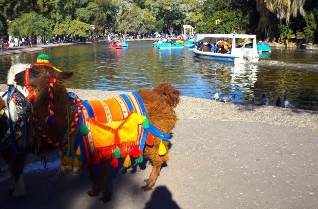Arjantin'de yaşam