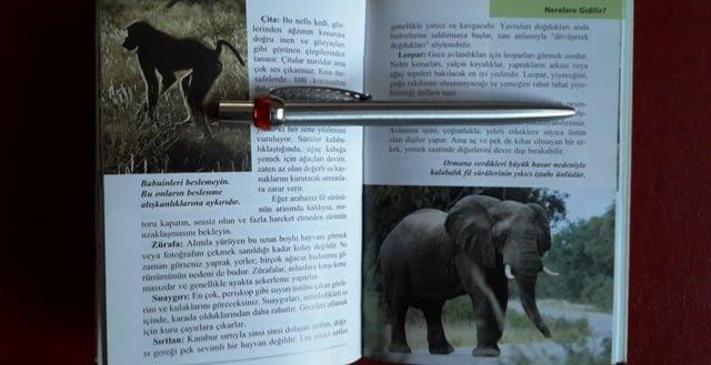 afrika hayvanlari