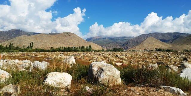Cholpon Ata petroglyphs reserve
