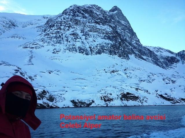Grönland gezi turları