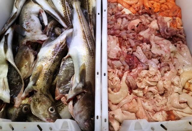 Grönland mutfak kültürü