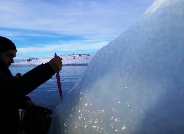 Grönland turları