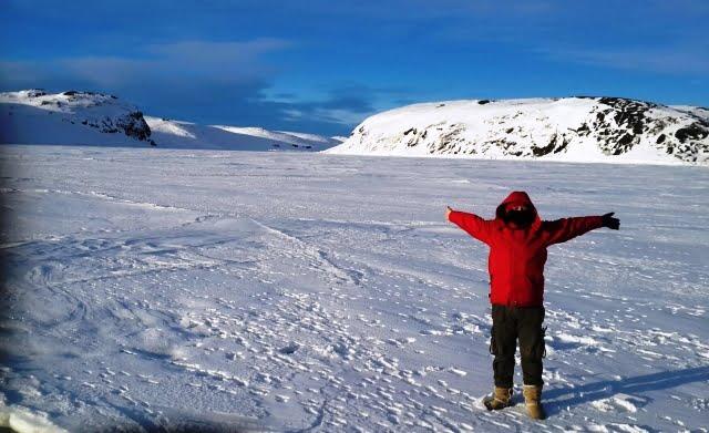 Grönland ülkesi