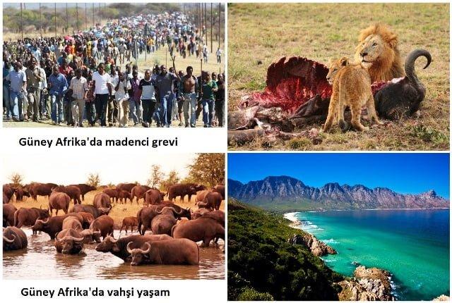 afrika gezisi