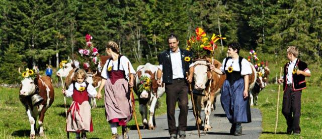 İsviçre gelenekler