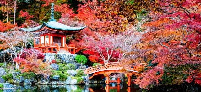 Japonya hakkında bilgiler