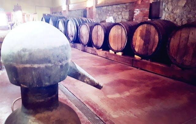 Şarap Müzesi