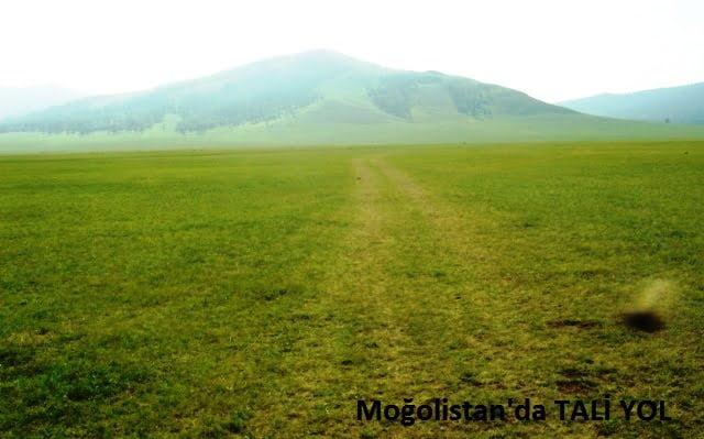 moğolistan yolculuk