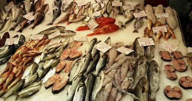 selanik balık
