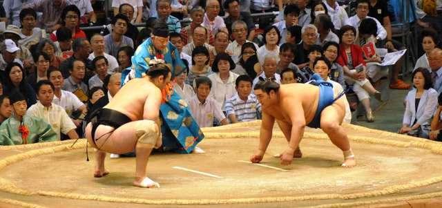 Sumo güreş